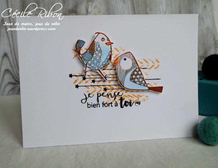 Carte CTD534 - P1030595