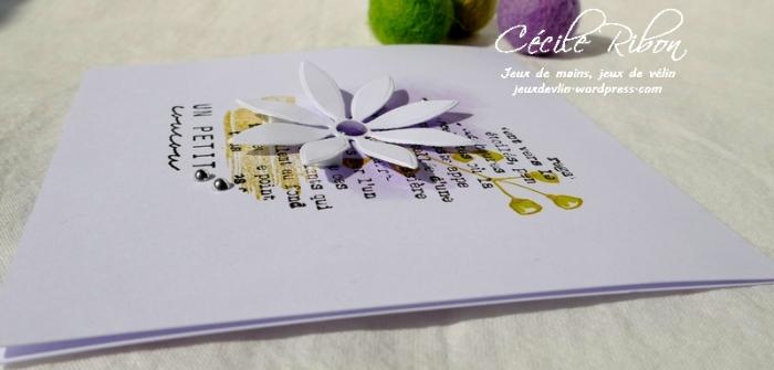 Carte CTD536 - P1030888