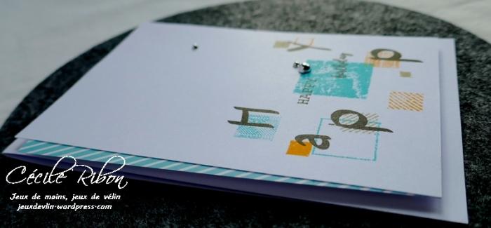 Carte CTS312 - P1030331