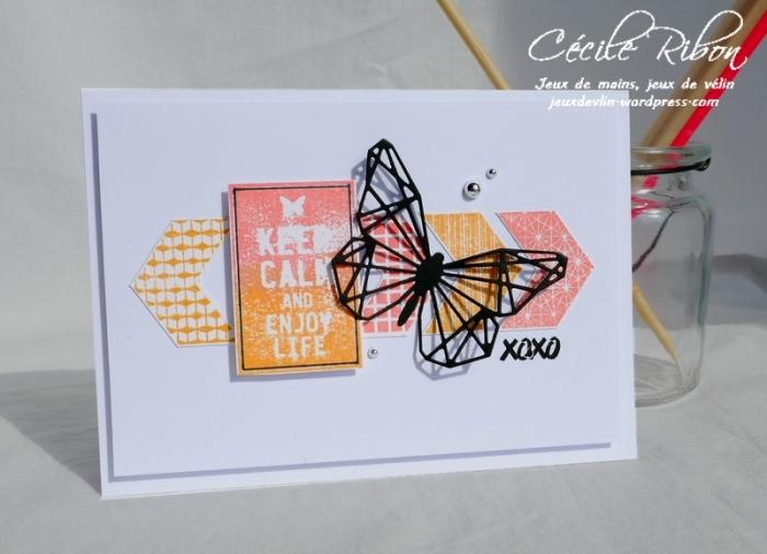 Carte CTS314 - P1030751