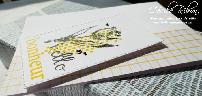 Carte Maniak198 - P1030672