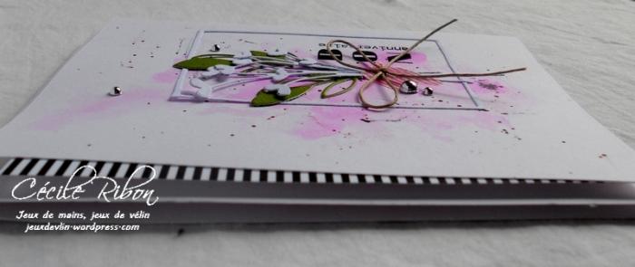 Carte Marie-Claire - DSCN6121