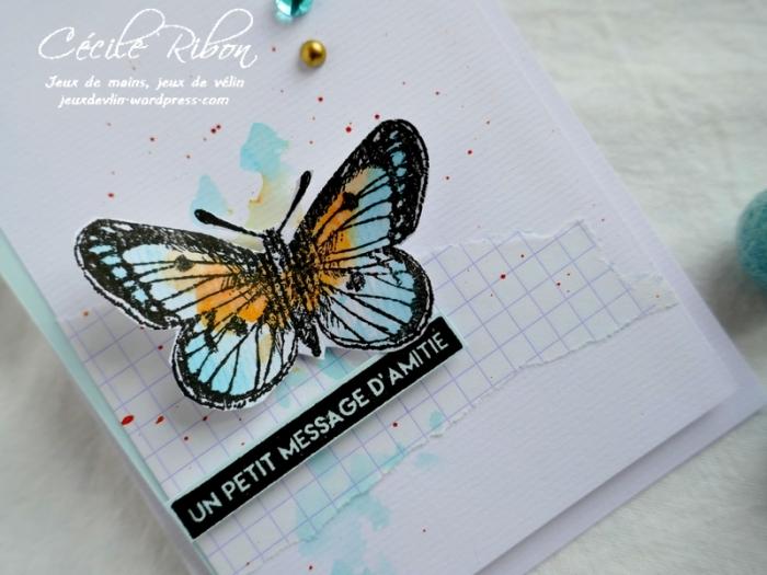Carte AID451 - P1030825