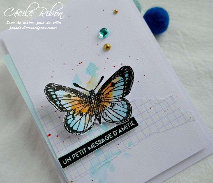 Carte AID451 - P1030827