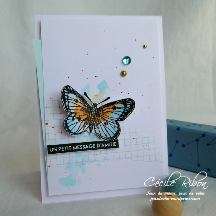 Carte AID51 - P1030804