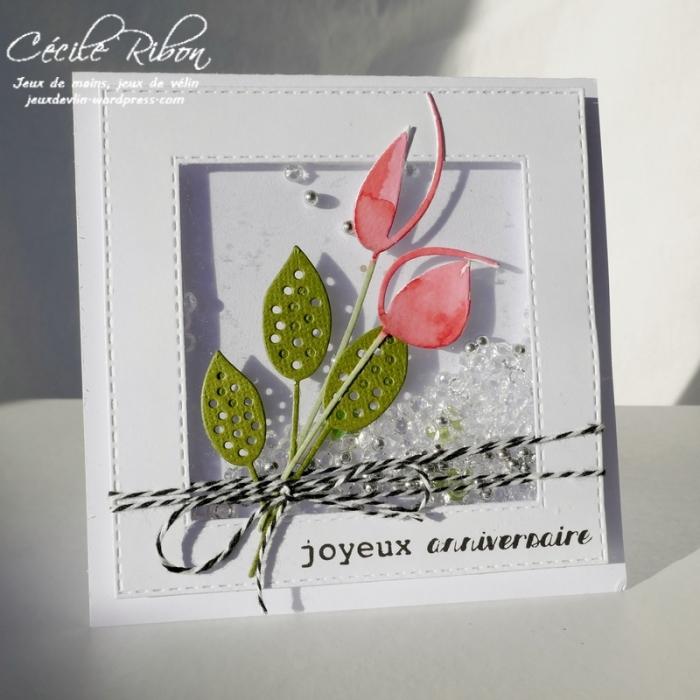 Carte CécileB - P1010662