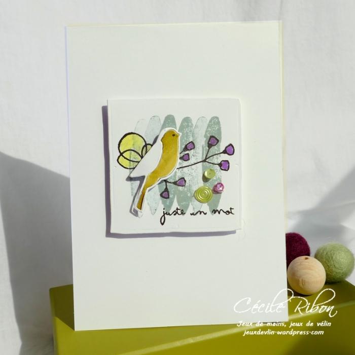 Carte CTD537 - P1040086