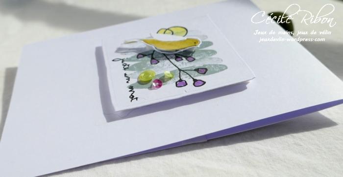 Carte CTD537 - P1040093