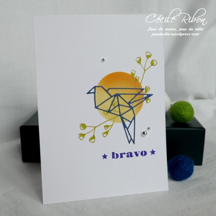 Carte CTD540 - P1040630