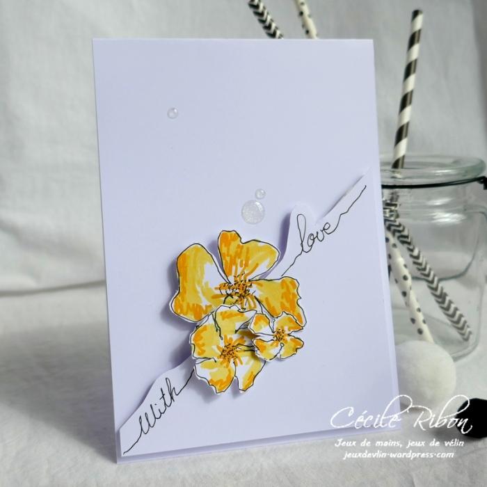 Carte CTS316 - P1040227