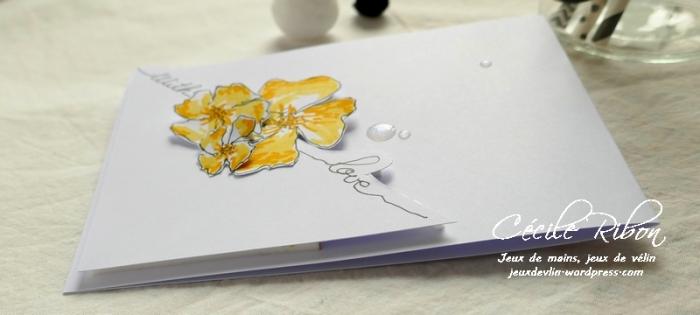 CAS(E) This Sketch#316
