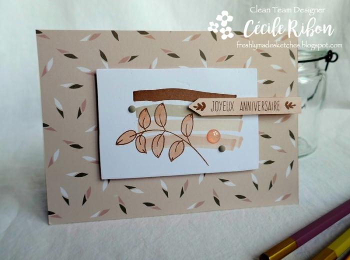 Carte FMS382 - P1030834