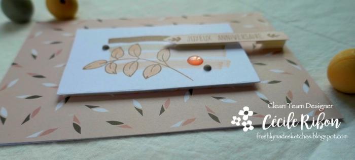 Carte FMS382 - P1030857
