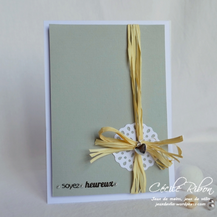 Carte FUSION45 - P1040384
