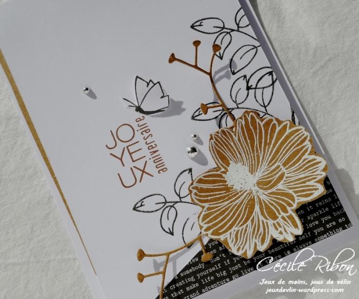 Carte Kcendres - P1000525
