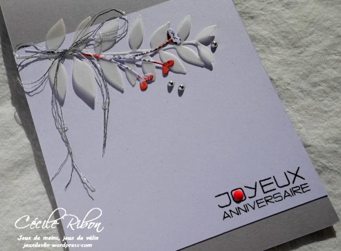 Carte Marielle - P1000114