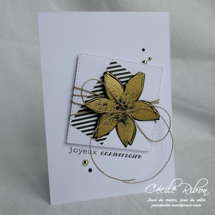 Carte Vicky - P1010026