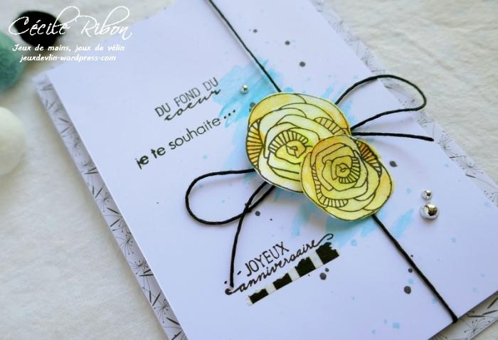 Carte AID53 - P1040523