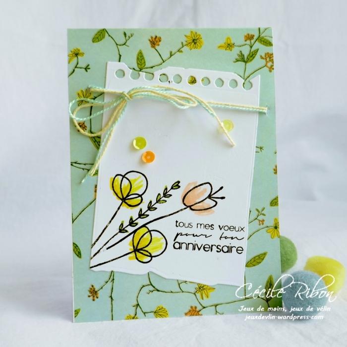 Carte CTS322 - P1050677