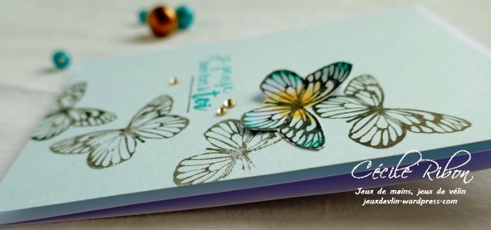 Carte CTS323 - P1050902