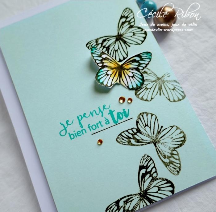 Carte CTS323 - P1050909