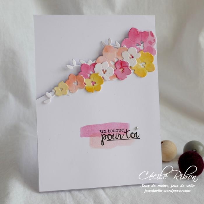 Carte LS86 - P1040014