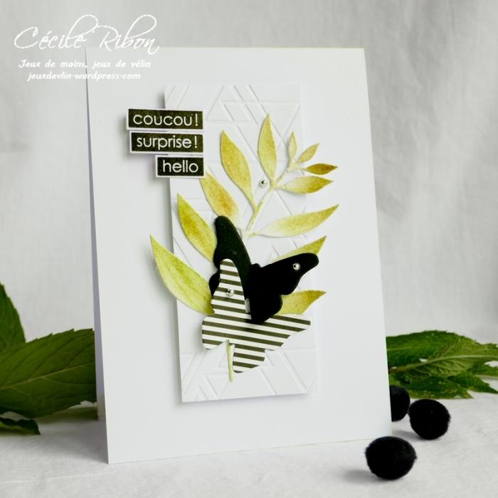Carte LS87 - P1050038