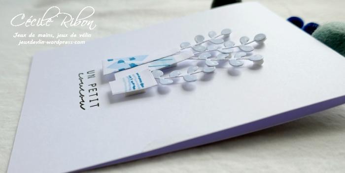 Carte LS88 - P1050127