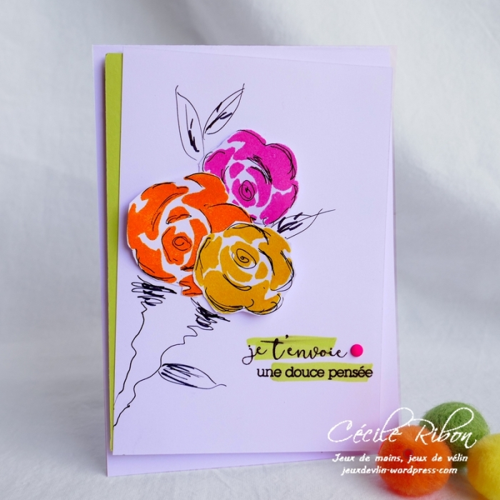 Carte CTD547 - P1060429