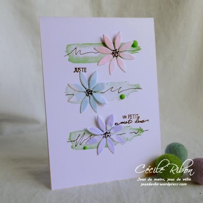 Carte CTD548 - P1060648