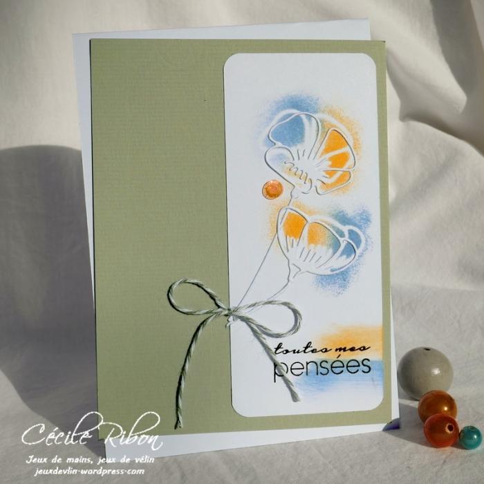 Carte CTD549 - P1060896
