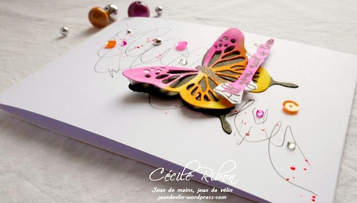 Carte CTS326 - P1060477