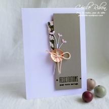 Carte CTS327 - P1060777