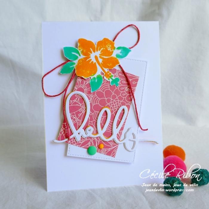 Carte FUSION50 - P1060499