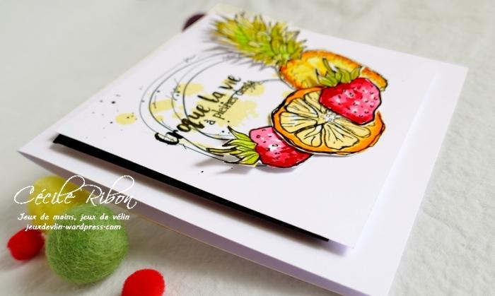 Carte Maniak201 - P1060351