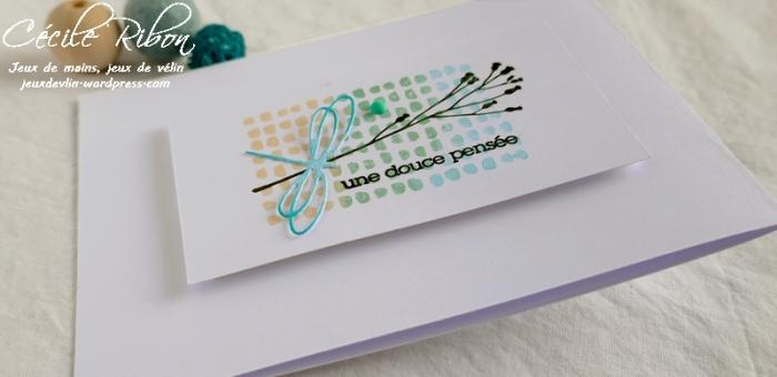 Carte AID58 - P1070554