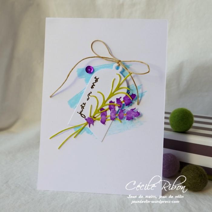 Carte CBBB13 - P1070024