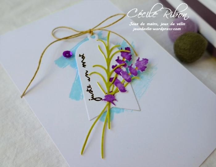 Carte CBBB13 - P1070035