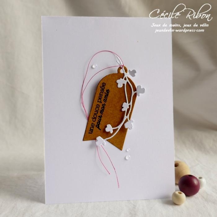Carte CBBB15 - P1070518