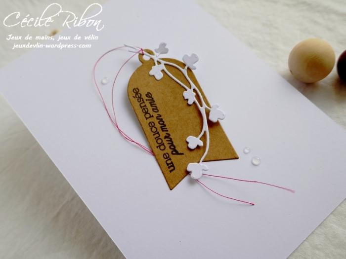 Carte CBBB15 - P1070533