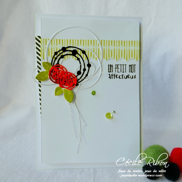 Carte CTD550 - P1070047