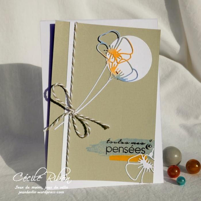 Carte CTS328 - P1060920