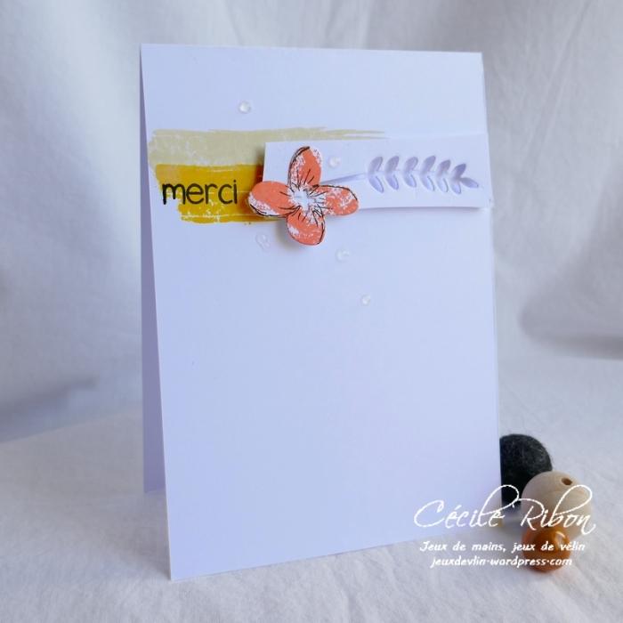 Carte CTS329b - P1070122