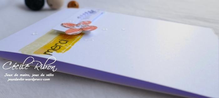 Carte CTS329b - P1070123
