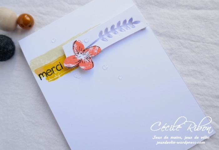 Carte CTS329b - P1070128