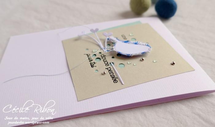 Carte CTS330 - P1070400