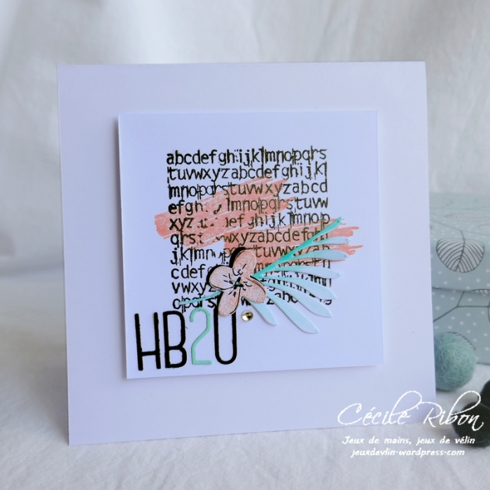 Carte EdwigeC - P1070211