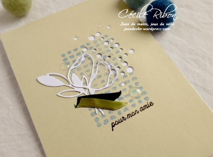Carte MAnnie - P1070381