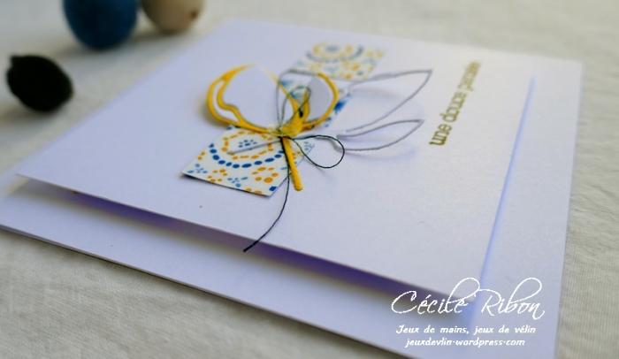 Carte SG1 - P1070142