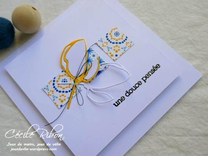 Carte SG1 - P1070145